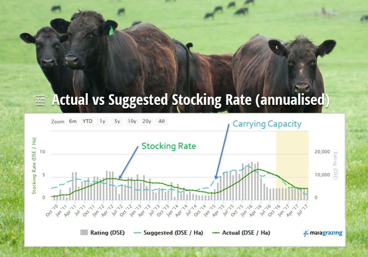 What is Stocking Rate & Carrying Capacity?