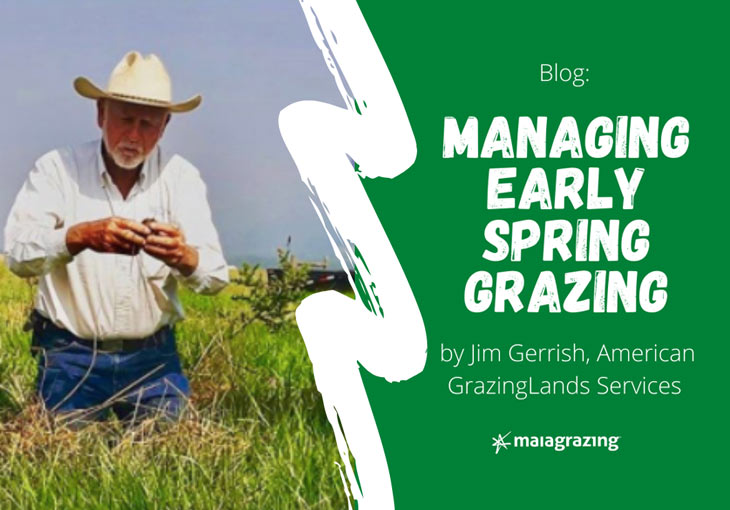 Managing Early Spring Grazing