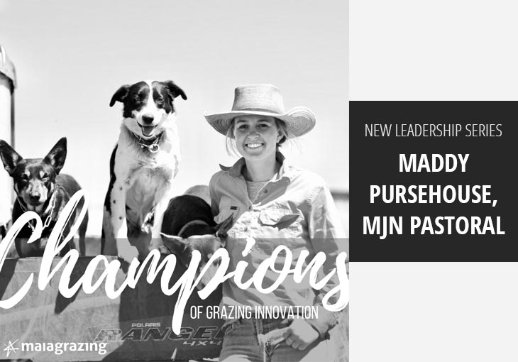 Champions of Grazing Innovation: Maddy Pursehouse