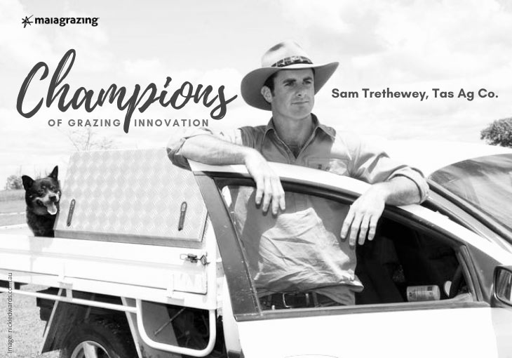 Champions of Grazing Innovation: Sam Trethewey